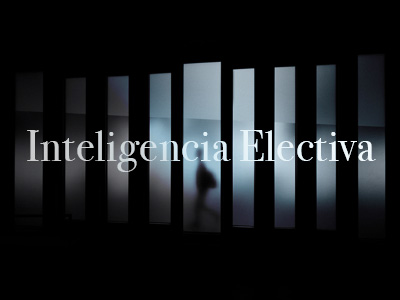 Inteligencia Electiva